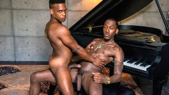 Gay Xnxx - You got the job man if your ass is tight for my dong black